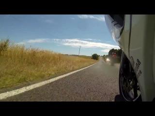 Мотоцикист сбил коалу